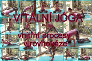 17-vitalni joga