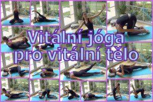 31-VJ pro vitalni telo