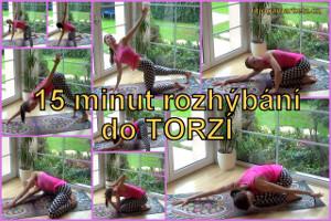 VT-Torze1