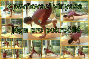 40-Vinyasa jóga pro pokročilé