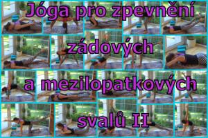 56-zadove a MZL svaly II
